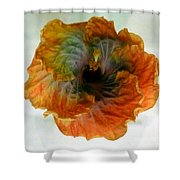 Hibiscus 13 Shower Curtain