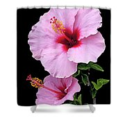 Hibiscus 7 V1 Shower Curtain