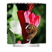 Hibiscus Aflutter Shower Curtain