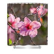 Hibiscus Shower Curtain