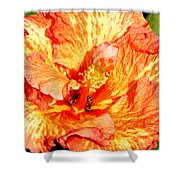Hibiscus And Bees Shower Curtain
