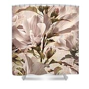 Hibiscus Apagado Shower Curtain