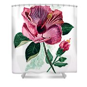Hibiscus Dusky Rose Shower Curtain