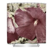 Hibiscus Floral Series  Shower Curtain