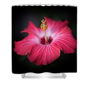 Hibiscus Flower Shower Curtain