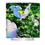 Hibiscus Garden Shower Curtain