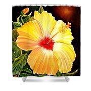 Hibiscus Glory Shower Curtain