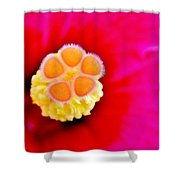 Hibiscus Glow Shower Curtain