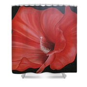 Hibiscus Melody Shower Curtain