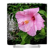 Hibiscus On A Rainy Day Shower Curtain