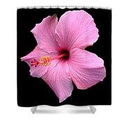 Hibiscus On Black Shower Curtain