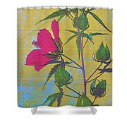 Hibiscus On Brick Shower Curtain