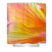 Hibiscus Petals Shower Curtain