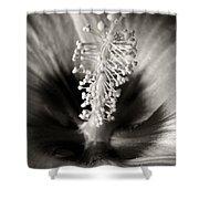 Hibiscus Secrets Shower Curtain