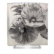 Hibiscus Sketch Shower Curtain