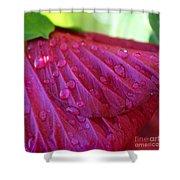 Hibiscus Square Shower Curtain