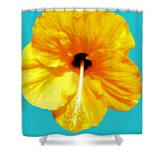 Hibiscus Test 4 Shower Curtain