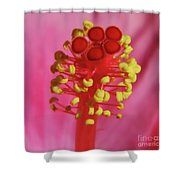 Hibiscus Up Close Shower Curtain