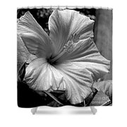 Hibiscus With An Infrared Effect Shower Curtain