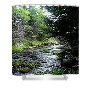 Hidden Brook Shower Curtain