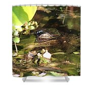 Hidden Gator Shower Curtain