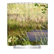 Hidden Grass Shower Curtain