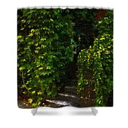 Hidden Hermitage Shower Curtain