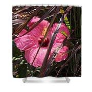 Hidden Hibiscus  Shower Curtain