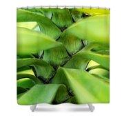 Hidden Landscape Shower Curtain