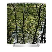 Hidden Pond Natural Fence Shower Curtain