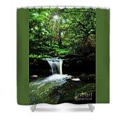 Hidden Rainforest - Painterly Shower Curtain