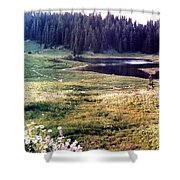 Hidden Valley Shower Curtain