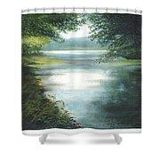 Hidden View Shower Curtain