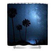 Hidden Worlds Shower Curtain