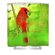 Hiding Behind The Leaves - Male Cardinal Art Shower Curtain