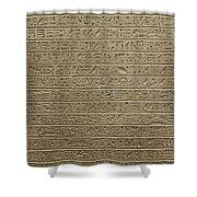 Hieroglyph Iv Shower Curtain