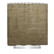 Hieroglyph V Shower Curtain