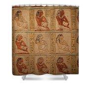 Hieroglyphic Detail Shower Curtain
