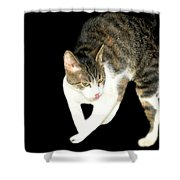 Higgins Does Dance Moves Shower Curtain