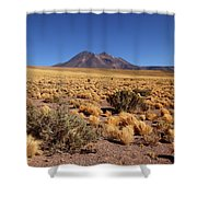 High Altitude Puna Grasslands And Miniques Volcano Chile Shower Curtain