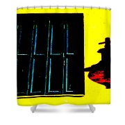 High Contrast Window And Lamp Shower Curtain