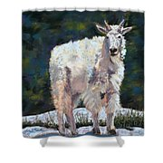 High Country Friend Shower Curtain