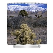 High Desert Country Shower Curtain