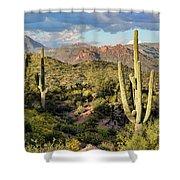 High Desert Peaks Shower Curtain
