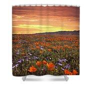 High Desert Sunset Serenade Shower Curtain