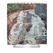 High Falls Dupont Forest Shower Curtain