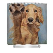 High Five Shower Curtain by Jindra Noewi