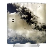 High Flight Shower Curtain