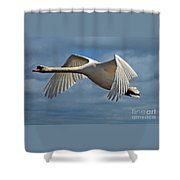 High Flying Shower Curtain