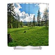 High Meadow Shower Curtain